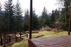 Deck to garden
