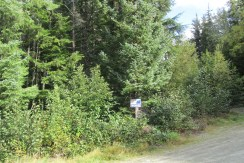 Building Lot Hemlock Estates