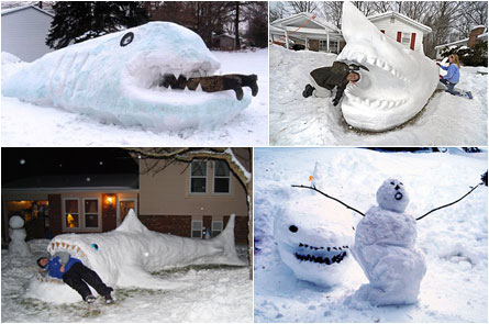 Snow Shark attacks