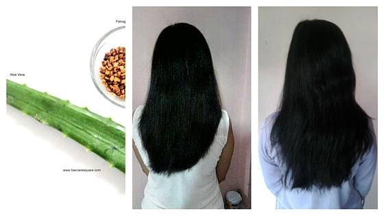Diy Hair Mask For Frizzy Hair Using Fenugreek And Aloe