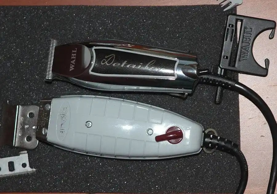 Wahl Detailer vs Andis GTX T-Outliner: Which will win?