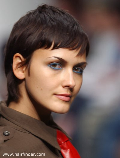 Short Gamine Haircut With The Hair Styled Smooth For A
