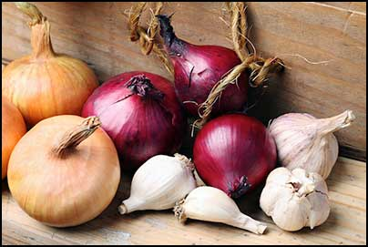 10 Ways You Can Use Onion And Garlic To Cure Hair Loss And Baldness