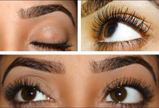 Castor Oil For Eyebrows Growth Eyelashes How To Apply