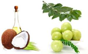 Indian-Gooseberry-Curry-Leaves-And-Coconut-Oil