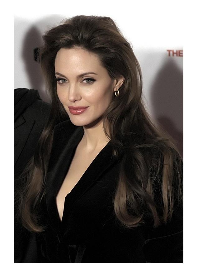 Angelina Jolie Human Hair Wig HairTurners