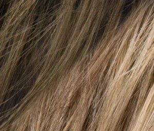 Toffee2tone Colour Ellen Wille Wigs