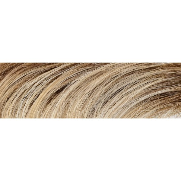 101/20+12 Smoky Grey Wig Colour by Gisela Mayer