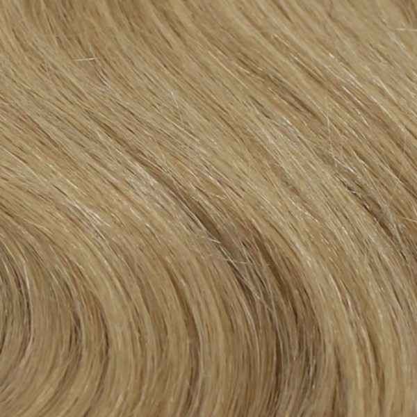 24 Human Hair Colour by Wig Pro