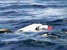 Haïti - Social : Encore un drame de la mer...