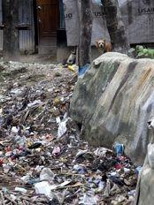 Haïti - Environnement : La France donne 30,000 Euros pour aider Haïti à ramasser les fatras