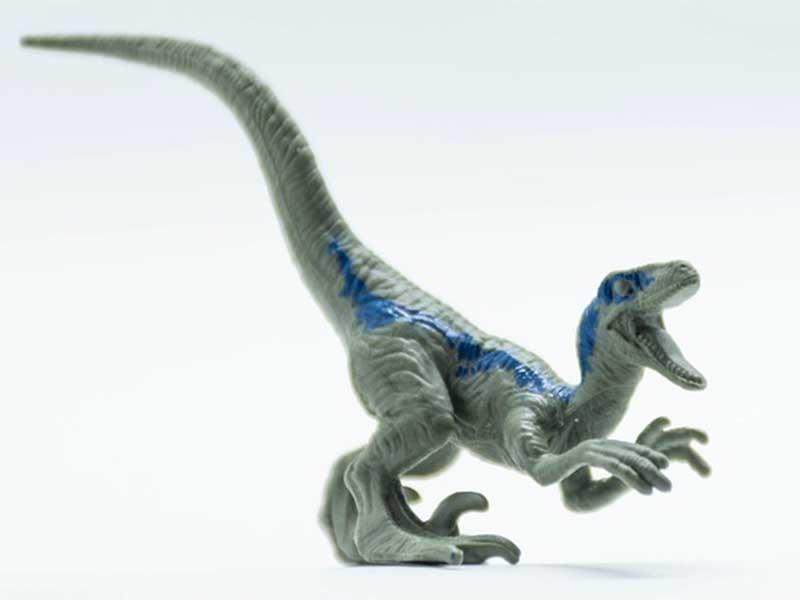 Velociraptor - Cuentos de dinosaurios para niños