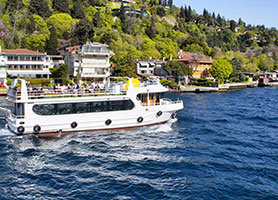 Half Day Bosphorus Cruise Tour
