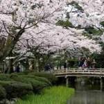 samurai in kanazawa