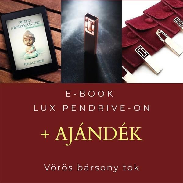 e-book pendrive halasz emese