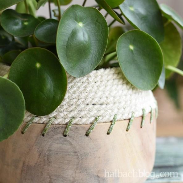 DIY-Idee Halbachblog: Tutorial für eine Holzschale mit Rope-Bowl-Rand aus Jute-Kordel und Strickbändchen in Natur-Grün