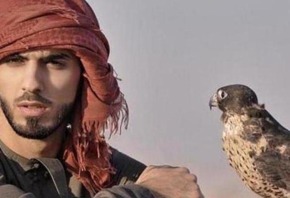 El halcón del Rey