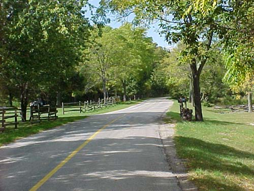 A country road, lined with old wooden fences and trees winds its way through Haldimand County