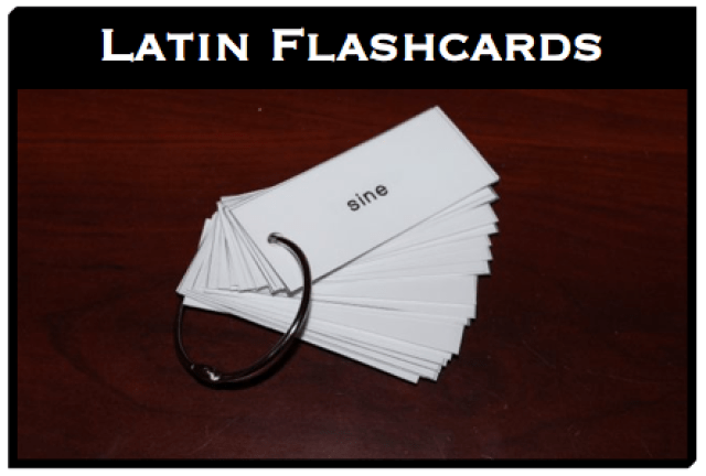 http://halfahundredacrewood.files.wordpress.com/2014/04/john-1-latin-vocab-cards.pdf