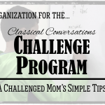 A Challenged Mom's Simple Tips for the Challenge Program