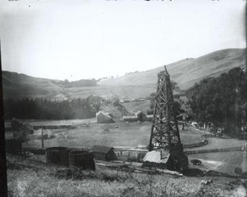 oil25.jpg