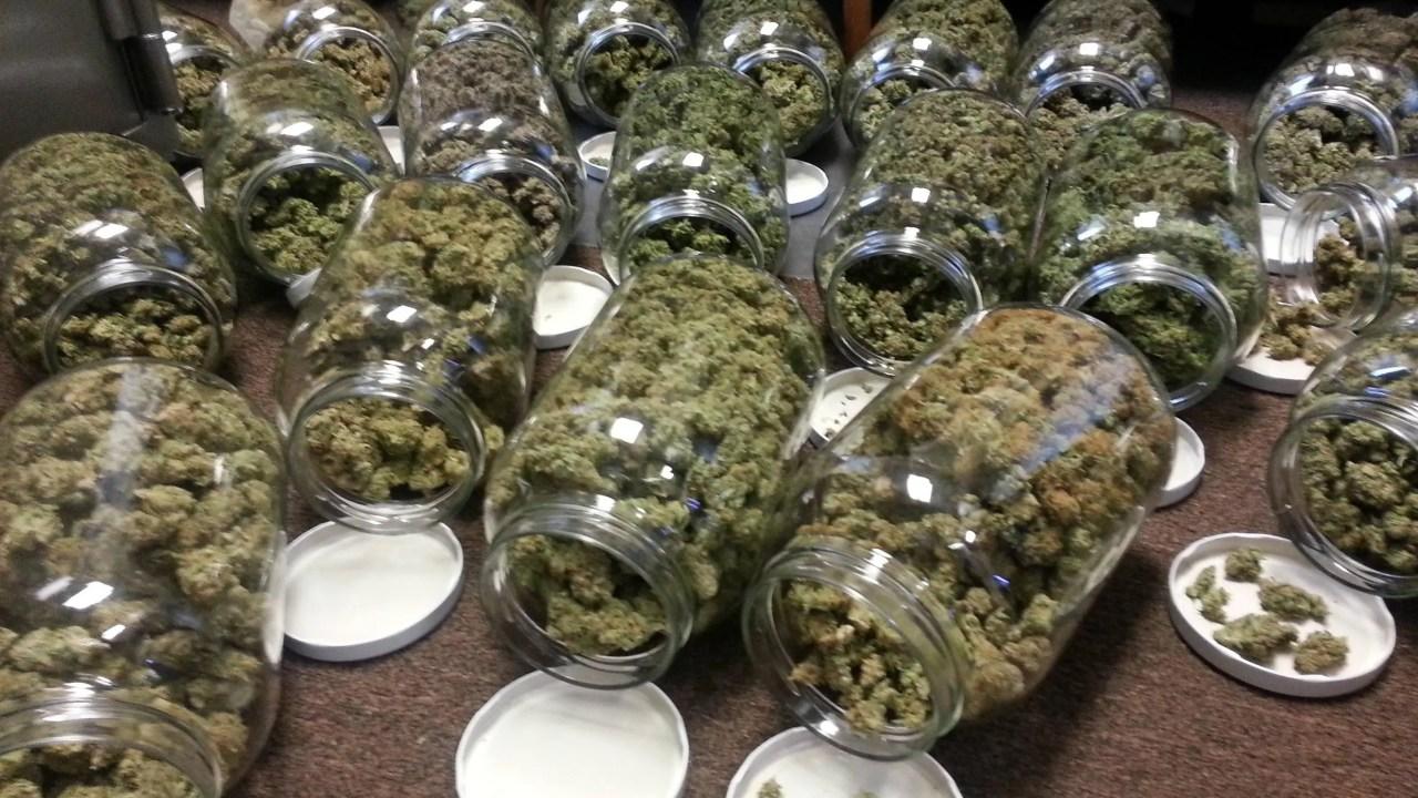 Marijuana Jars