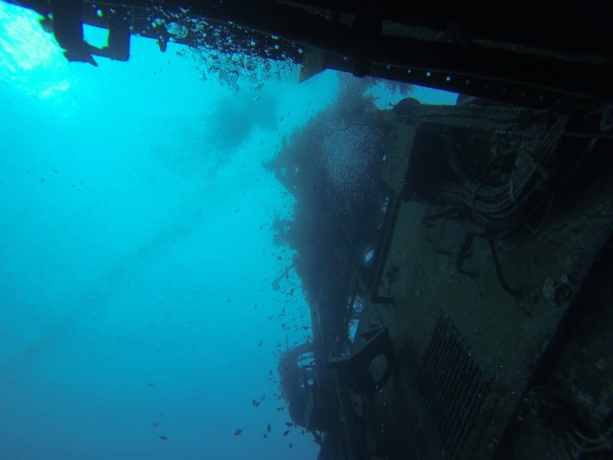 Red Sea Diving Inside The Ship