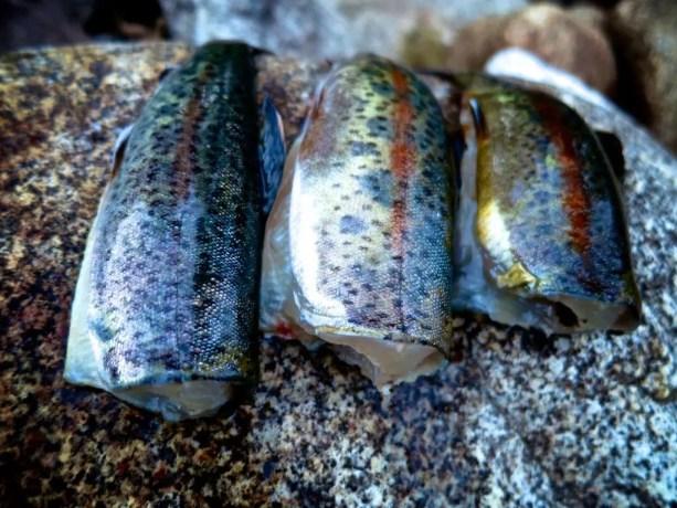 30 Fresh Fish Dinner