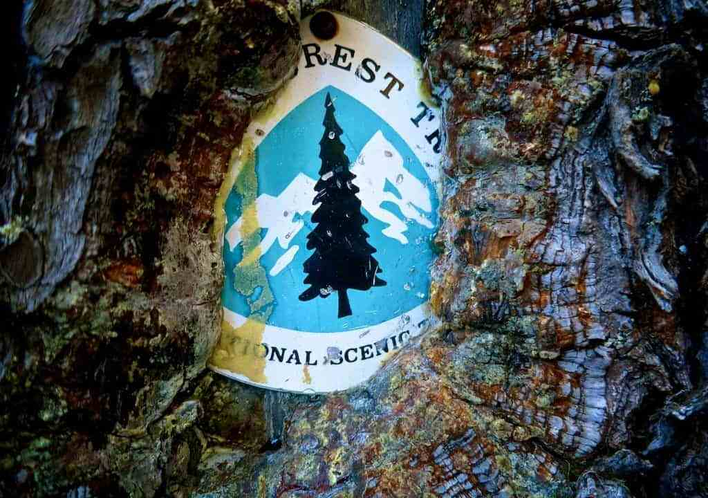 PCT Marker Tree Eating