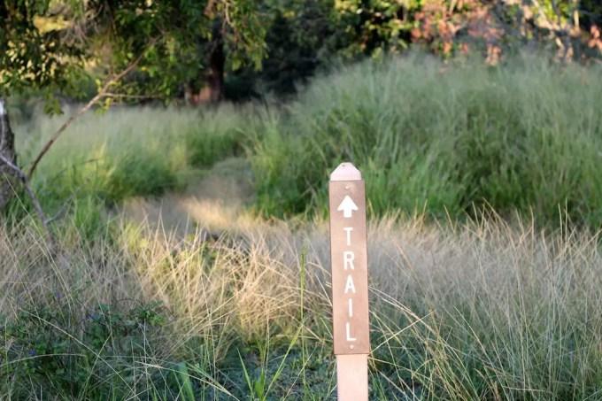 Kaupo Gap Trail Marker Brush