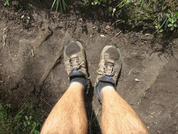 Darn Tough Socks PCT