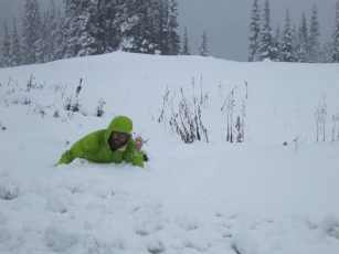 Appa Snow Harts Pass Pacific Crest Trail