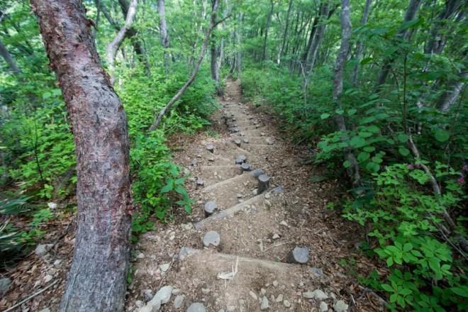 Mt Arashima Trail 1