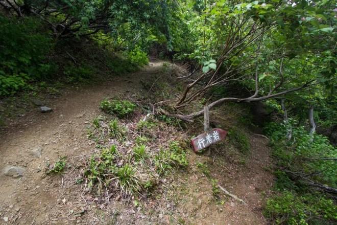 Mt Nosaka Spur Trail