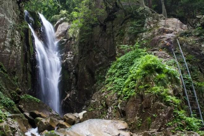 Mt Bunagatake Waterfall Ladder Trail