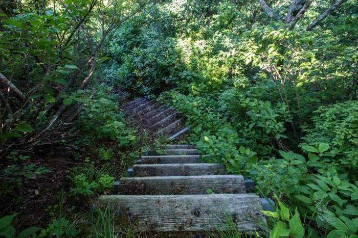 Hakusan Zenjoudo Trail