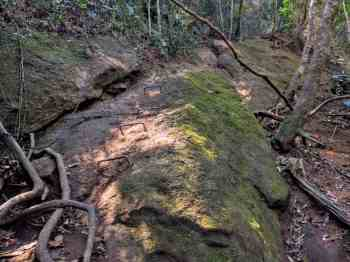 brazil-rio-de-janeiro-corcovado-climb