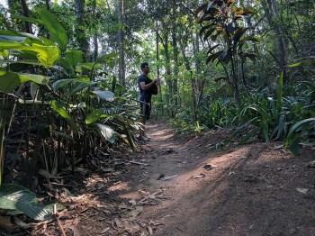 brazil-rio-de-janeiro-dois-irmaos-trail-1