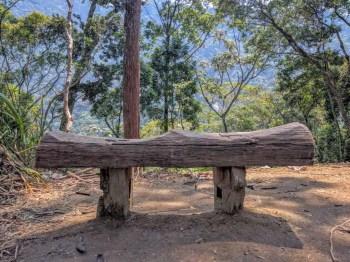 brazil-rio-de-janerio-corcovado-trail-6