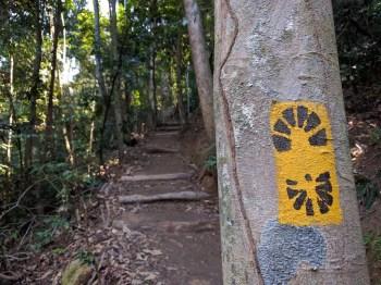 brazil-rio-de-janerio-corcovado-trail-7