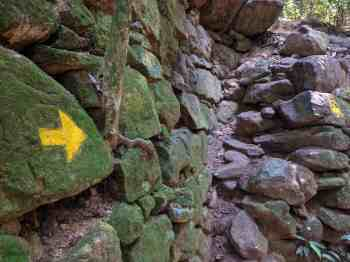 brazil-rio-de-janerio-corcovado-trail-8