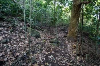 brazil-rio-de-janeiro-pedra-da-gavea-alt-trail-2