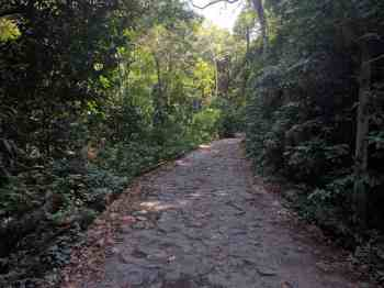 brazil-rio-de-janeiro-pedra-da-gavea-road-1