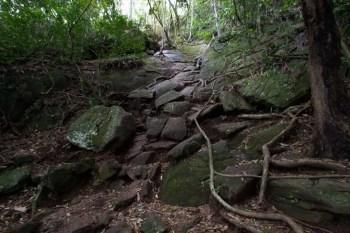 brazil-rio-de-janeiro-pedra-da-gavea-trail-9