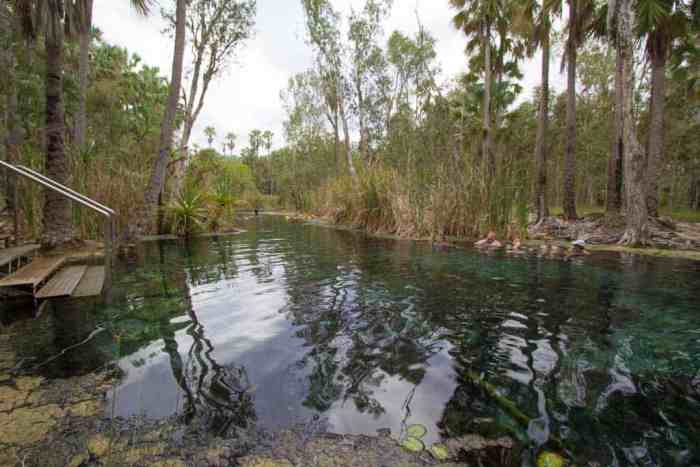 Australia-Mataranka-Hot-Springs