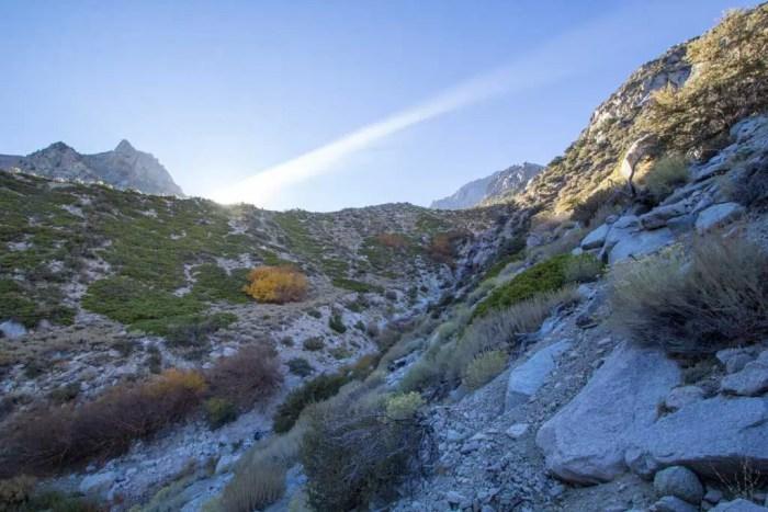 Sierra-Fall-21-Shephard-Sundown
