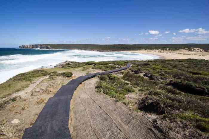 Royal-Coast-Track-Trail-Beach