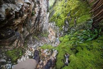 Tasmania-Western-Arthurs-The-Chasm-Above