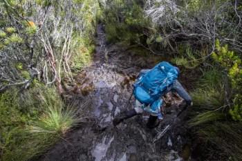 Tasmania-Western-Arthurs-Wags-Mud