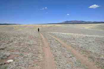 CDT-New-Mexico-Moist-Road-Walk